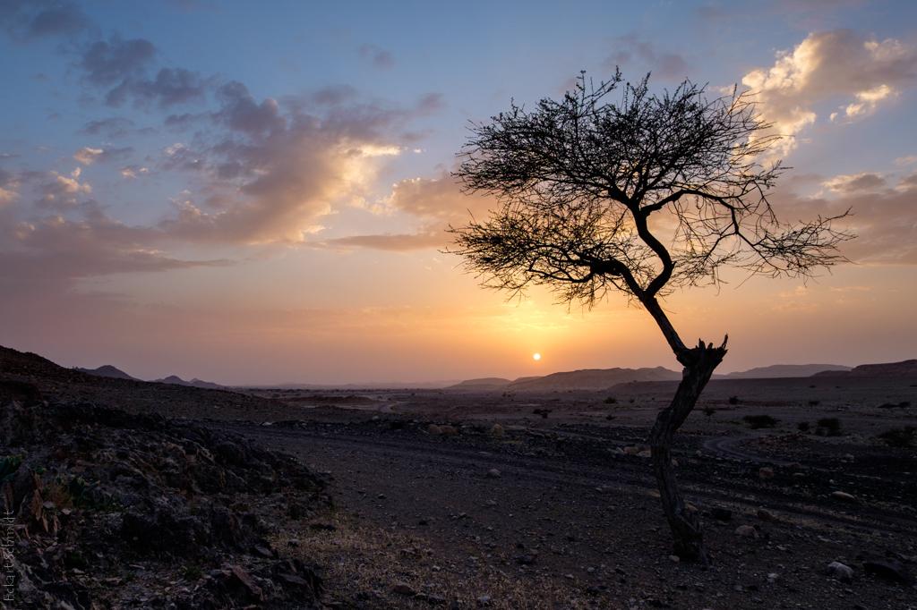 Jordan - Dana Reservate